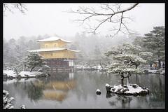 日本京都-金閣寺-雪.36