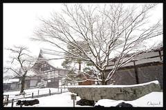 日本京都-金閣寺-雪.19