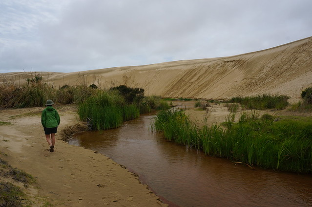 These dunes reminded me of the Great Sand Dunes National Park in Colorado