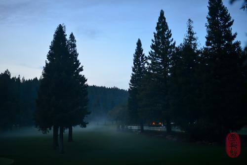 Misty dusk.