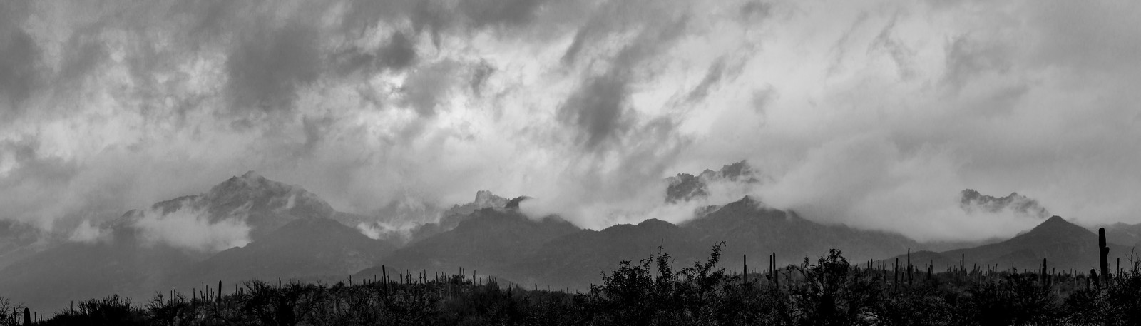 1412 Clouds over the Santa Catalina Mountains from Sabino Canyon