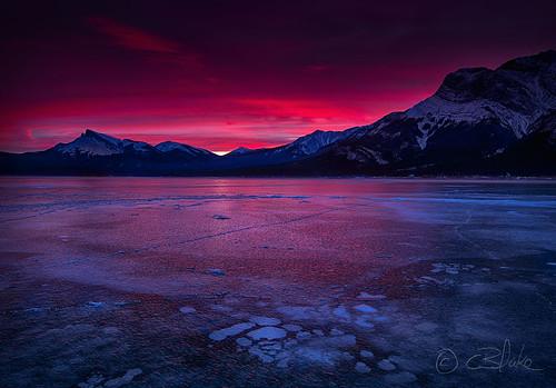 winter ice landscape frozen bubbles alberta abrahamlake kootenayplains
