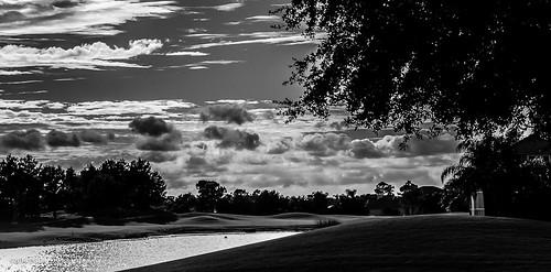 blackandwhite monochrome landscape florida countryclub lakewoodranch nikond7000 afsnikkor18105mm13556g bgdl lightroom5