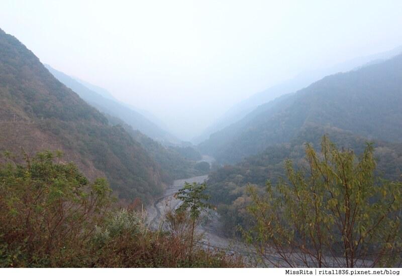 清境觀光巴士 奧萬大森林遊樂區 賞楓63-