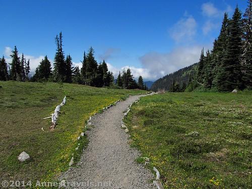 The clouds work they way up the valley toward Mt. Rainier, Spray Park, Mt. Rainier National Park, Washington