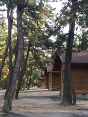 Cabin in the woods, Tottori.