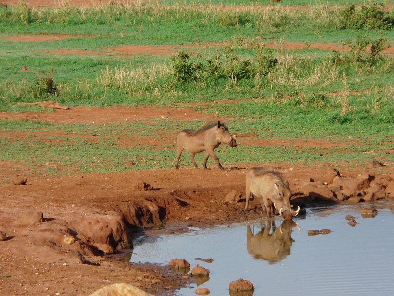 Kenia2007-0612