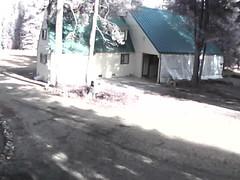 00606E91EAE6(countryman2) motion alarm at 20141128130319