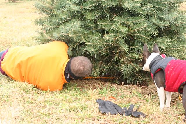TreeHunting2014 (76)