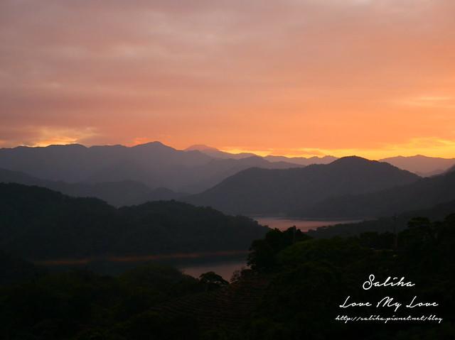 新北石碇景點千島湖八卦茶園 (12)