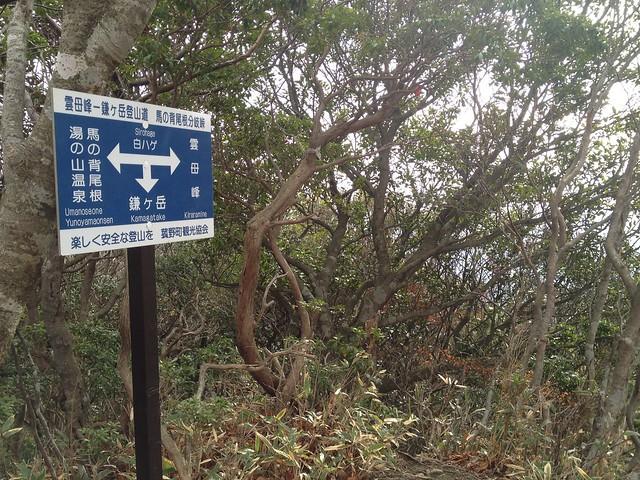 鎌ヶ岳 雲母峰-鎌ヶ岳登山道 馬の背尾根分岐峠