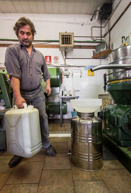 Come riconoscere un olio extravergine di qualità?