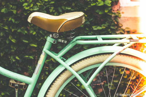 Bike/ Light Leak