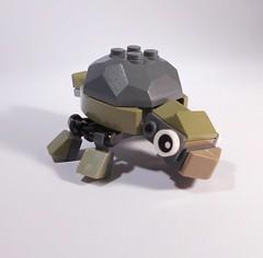 Rocky Turtle 1