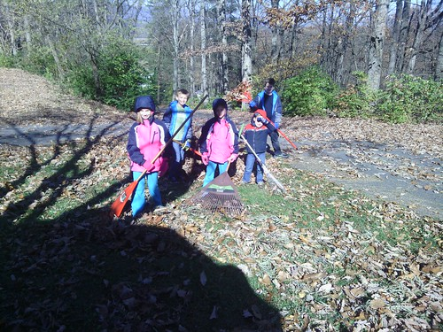Nov 15 2014 Raking at Janet Puffenbarger
