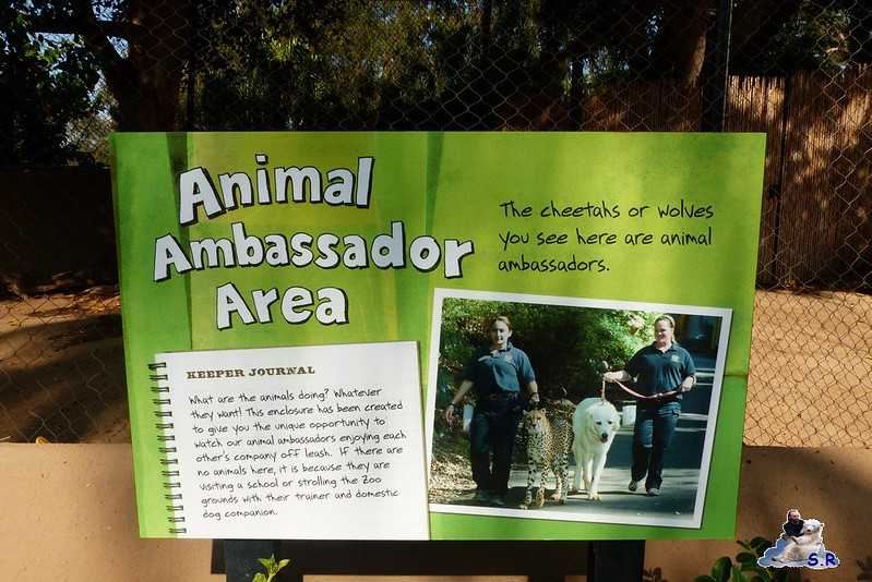 San Diego Zoo 10.11.2014 23