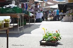 COVALEDA, EL MERCADILLO DE LOS VIERNES
