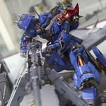GBWC2014_World_representative_exhibitions-56