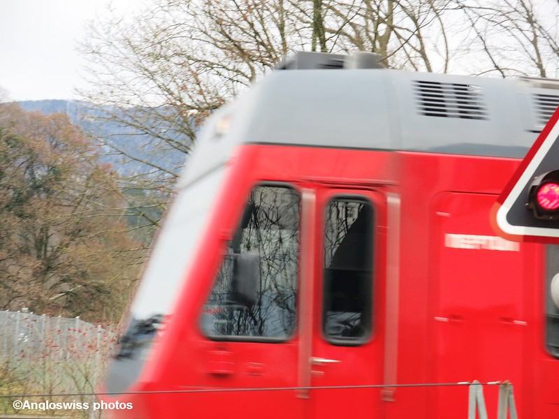 Bipperlisi speeding past in Feldbrunnen