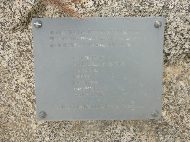 Park Plaque, Panasonic DMC-TS20