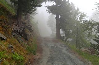 021 Boven bij Sunnega in de mist