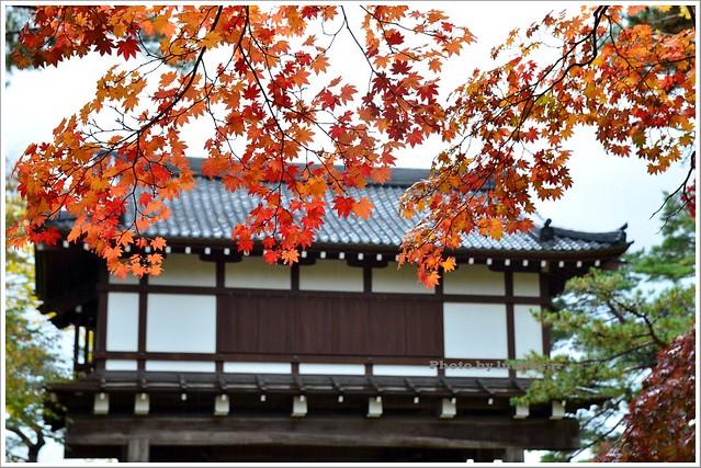 秋田千秋公園016-DSC_3564