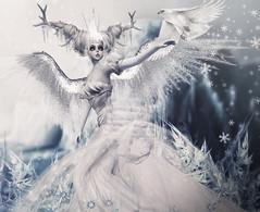 Nimoe for Boudoir *Ice Princess*