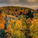 Fall Color at Santa Fe Ski Basin, New Mexico