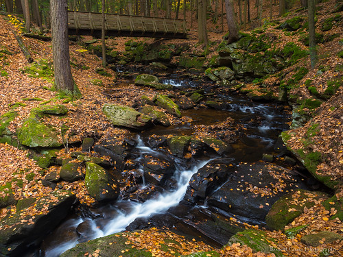 longexposure bridge autumn trees fall leaves creek forest landscape waterfall newengland newhampshire nh olympus gorge cascade omd em5 1250mmf3563mzuiko