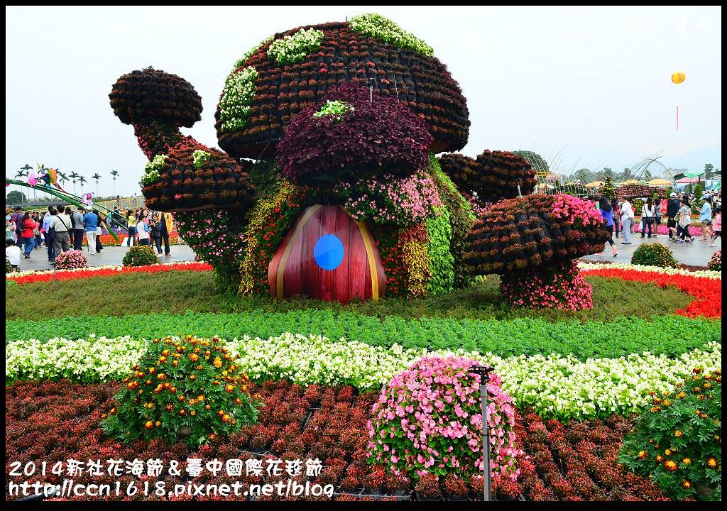 2014新社花海節&臺中國際花毯節DSC_4995