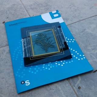 3.  Cyanotypes - Making of (3)