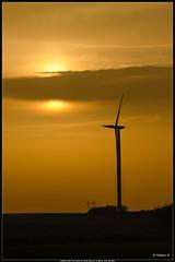 Couché de soleil sur éolienne champenoise - Photo of Aingoulaincourt