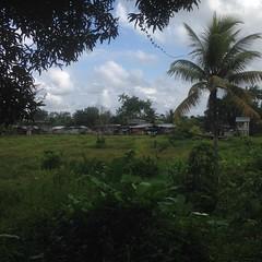 Guapi - Cauca