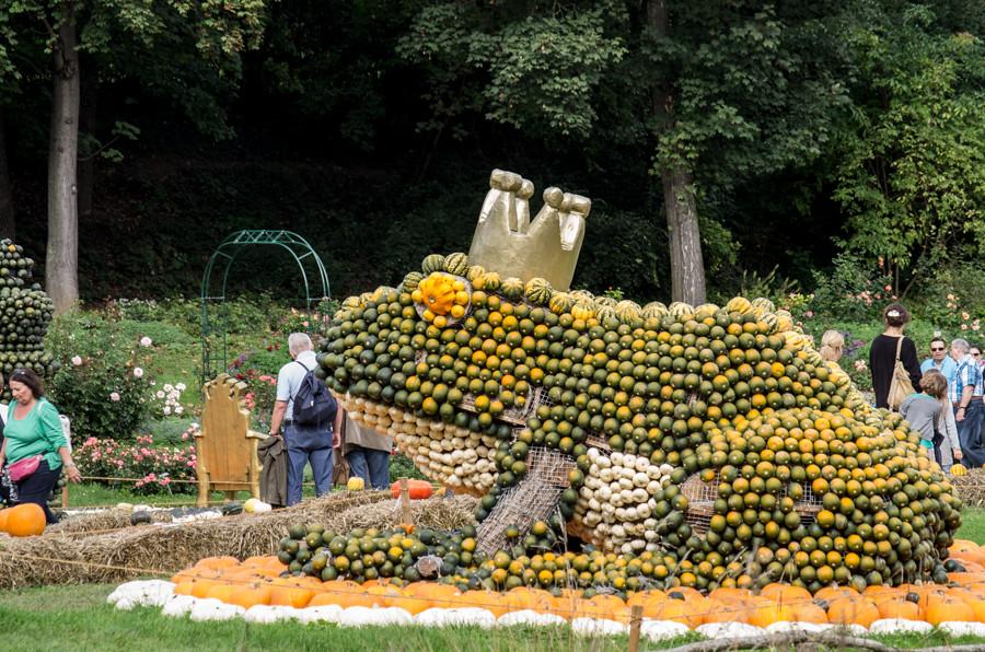Pumpkinfest-1428