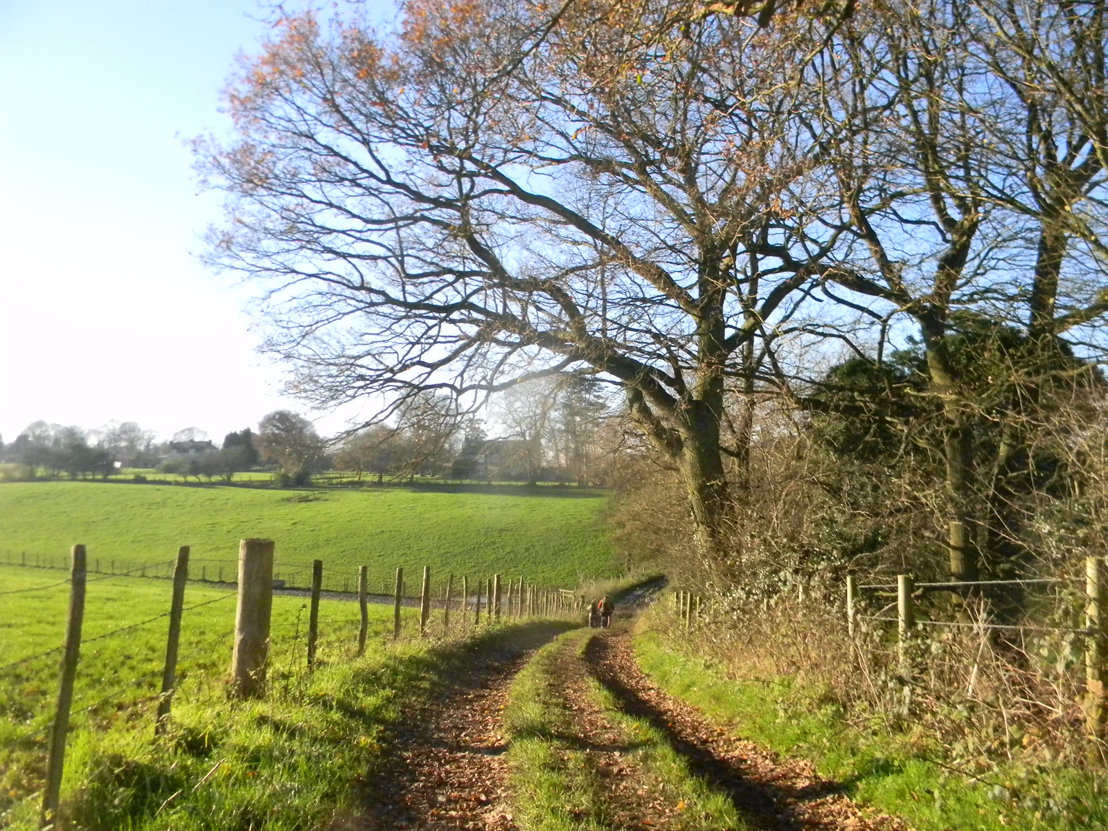 Curved path Otford Ciorcular