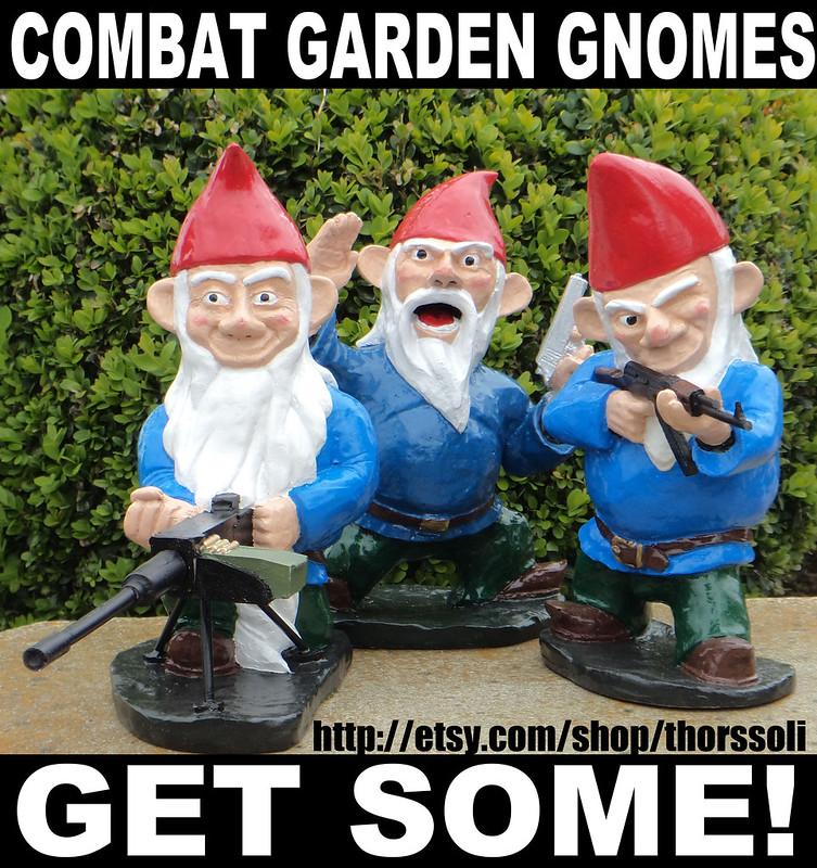 Combat Gnome MEME6