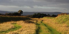 Nature Reserves - UK