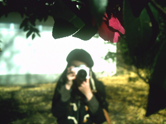 赤い花とツマー