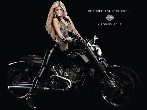 Harley_Davidson _107