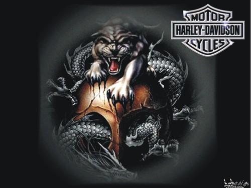 Harley_Davidson _005