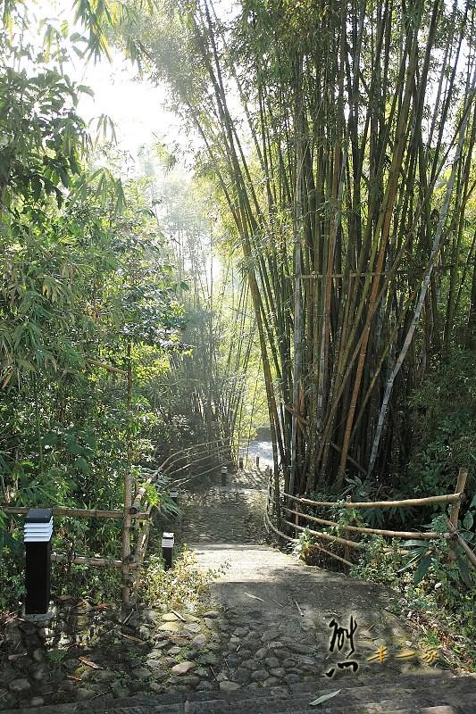 日月潭親子住宿|竹石園生態渡假會館|面湖景觀私房景點