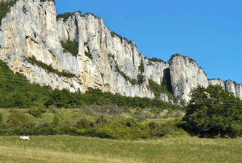 falaise calcaire cielbleu chèvres dröme