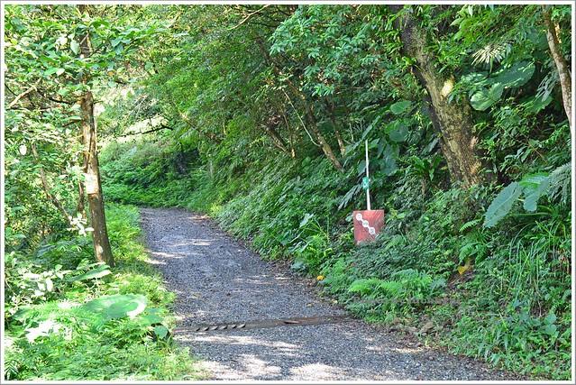 聖母山莊聖母登山步道宜蘭礁溪004-DSC_6604