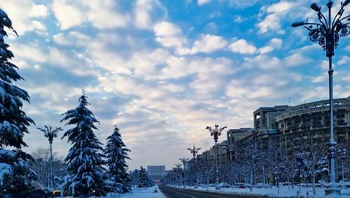 winter urban snow europe downtown boulevard romania bucharest streetview winterscene