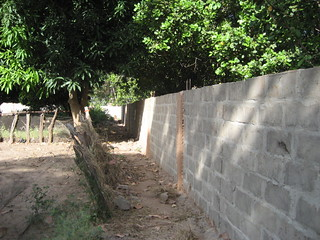 Wall along the back of the garden area