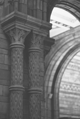 {london's natural history museum} via chevrons & éclairs