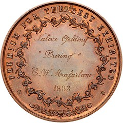 Lot 1747 Royal Hawaiian Agricultural Society Bronze Medal reverse
