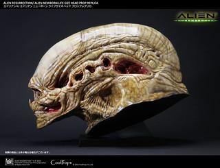 CoolProps【逆種異形】Alien Newborn 1:1 電影道具複製頭像