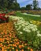Humboldt Park Flower Garden