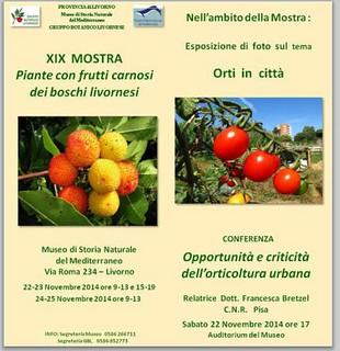 XIX mostra piante con frutti carnosi Livorno